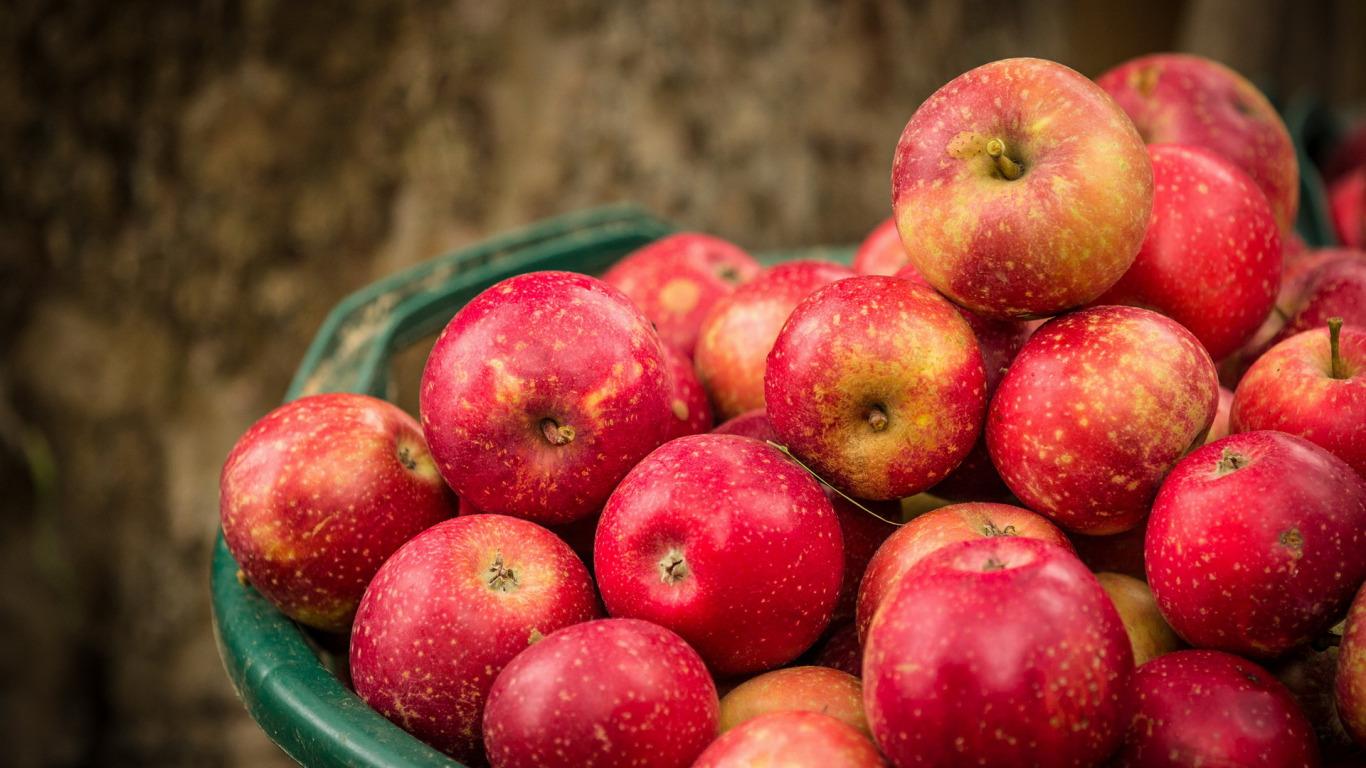 denies apples plea - HD1366×768