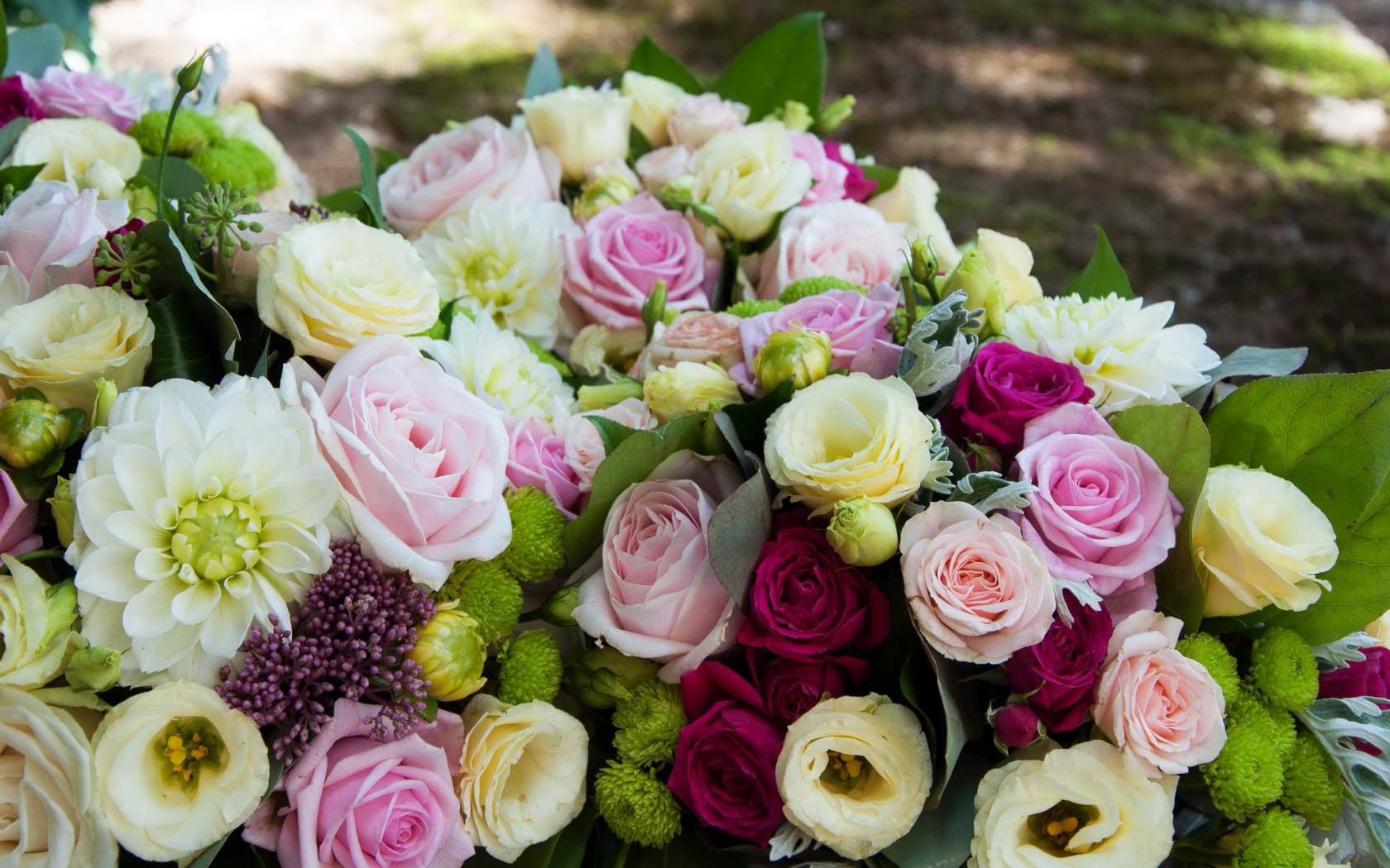 обои для рабочего стола эустома цветы № 634112 без смс