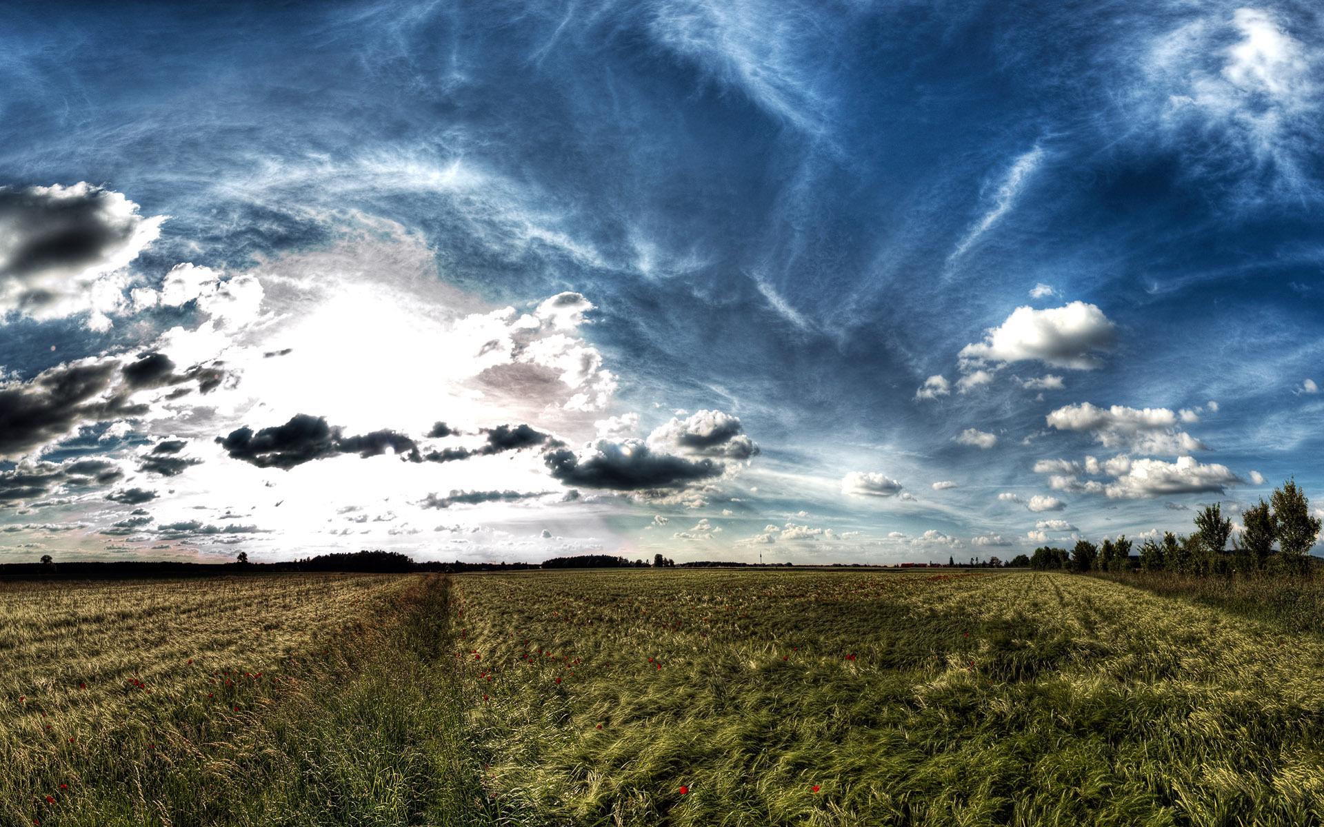 природа облака небо горизонт поле  № 204237 загрузить