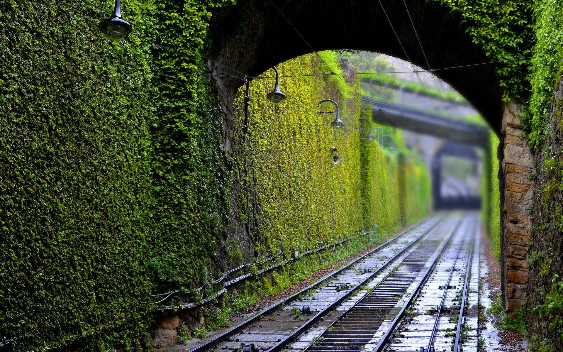 рельсы железная дорога деревья туннель  № 3118350 загрузить
