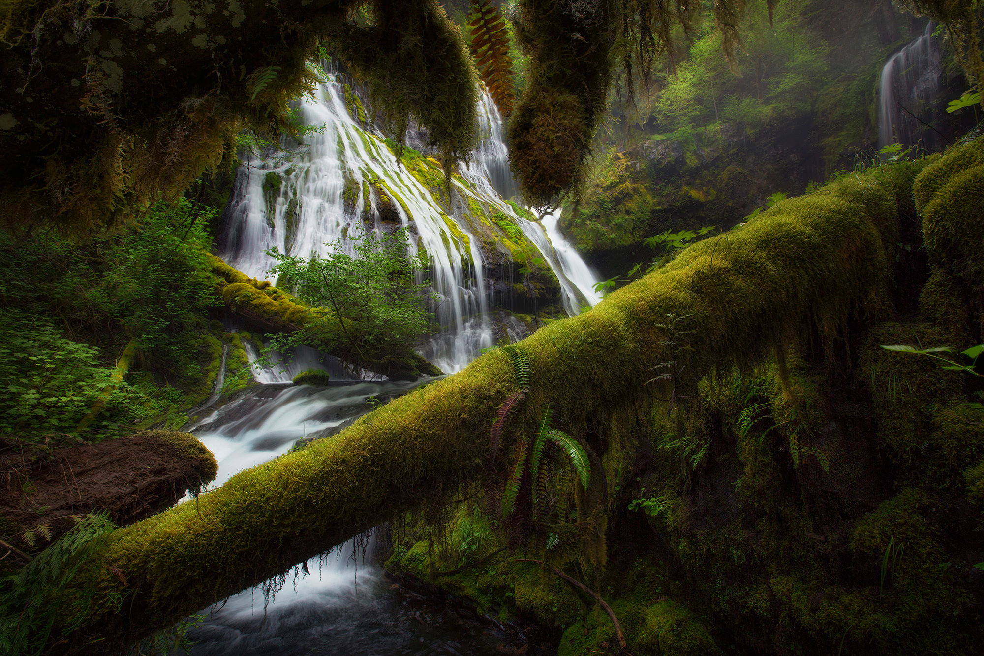 природа река водопад лес деревья nature river waterfall forest trees  № 484102 загрузить
