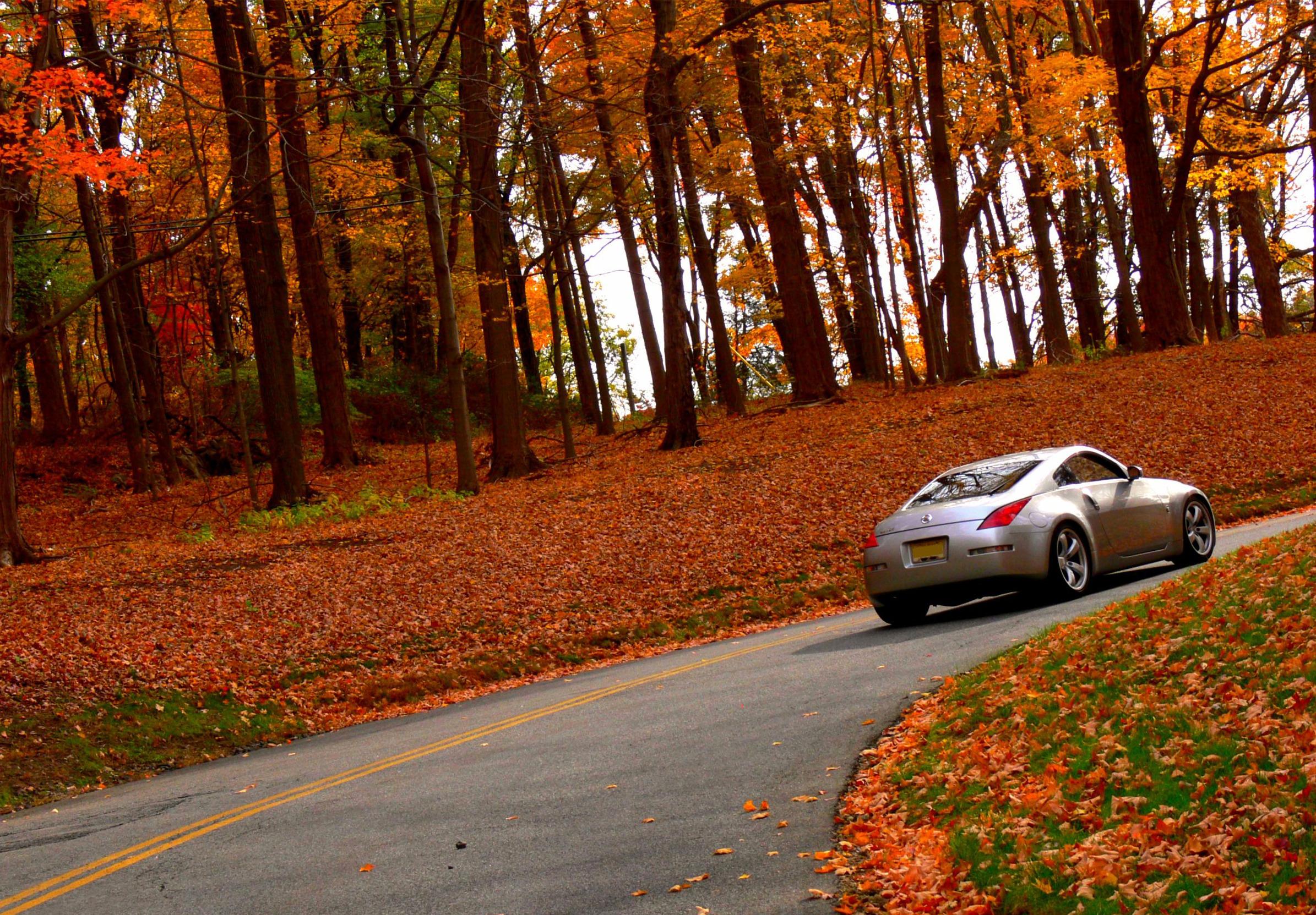 автомобиль осень лес дорога  № 3771436 загрузить