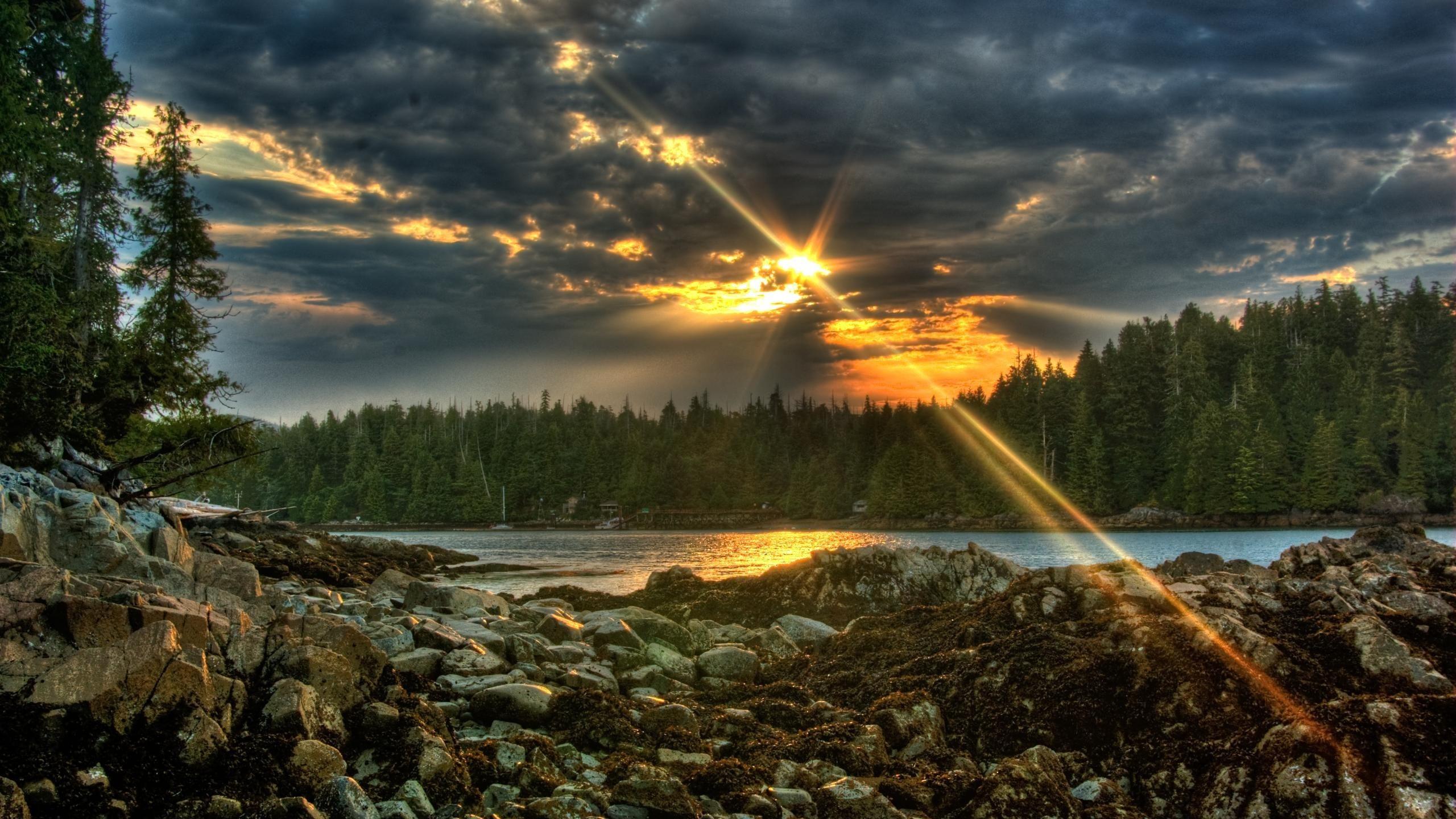 природа река солнце деревья  № 198688 без смс