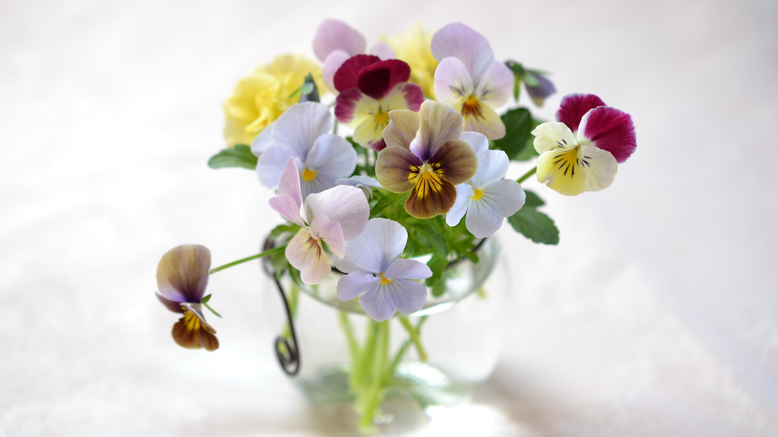 природа цветы ваза  № 1734245 без смс