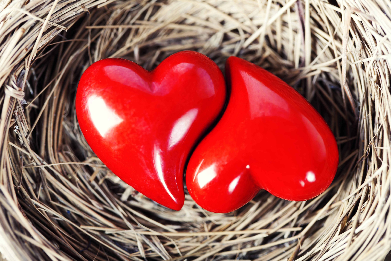 Сердце из камушка  № 1609198 бесплатно