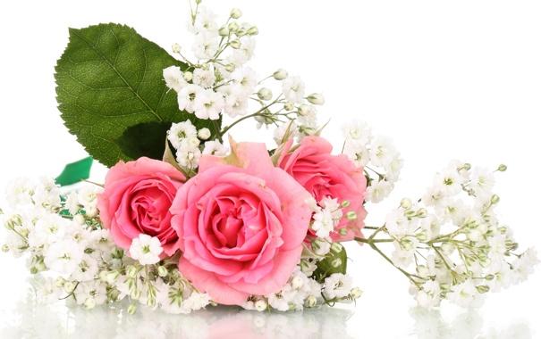 Фото обои цветы, розы, букет, розовые розы
