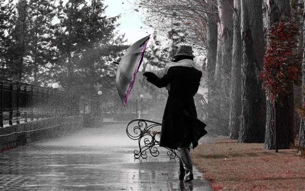 Фото обои девушка, парк, зонтик, дождь