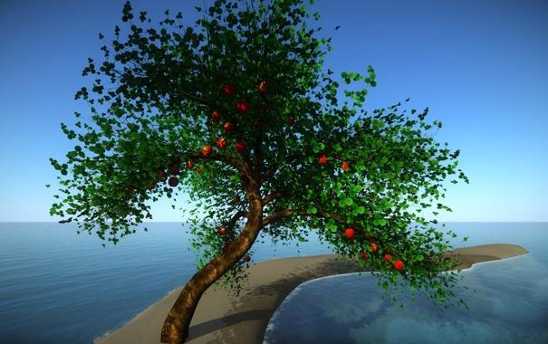 Фото обои море, небо, листья, дерево, коллаж, плоды, коса