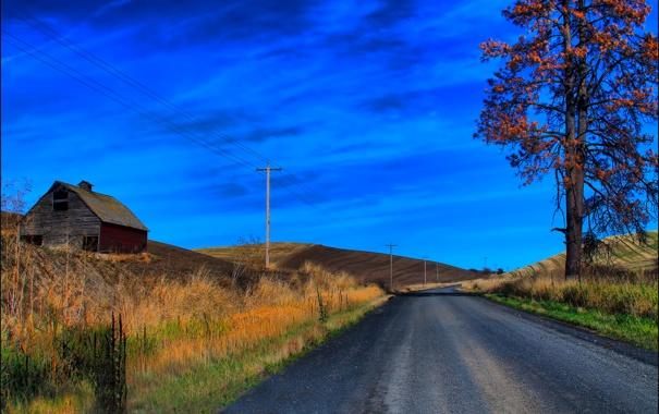 Фото обои дорога, осень, небо, трава, облака, дом, дерево