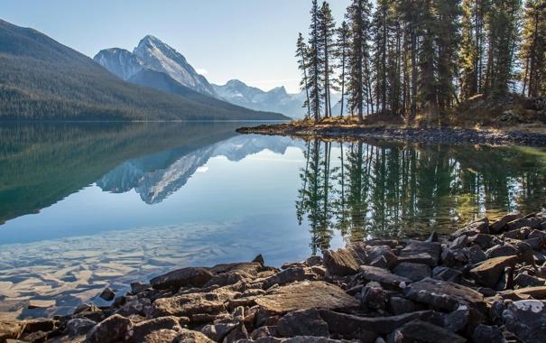 Фото обои лес, деревья, горы, природа, озеро, камни