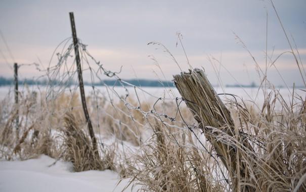 Фото обои зима, поле, забор