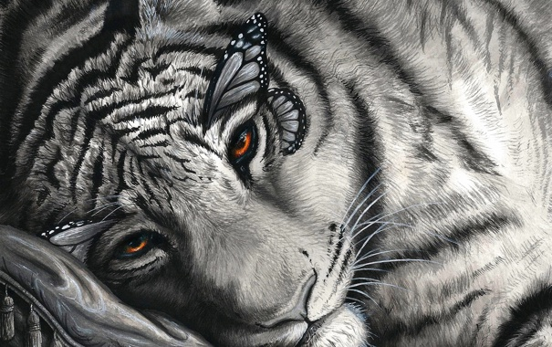 Фото обои морда, рисунок, арт, подушка, черно-белое, лежа, монохромное