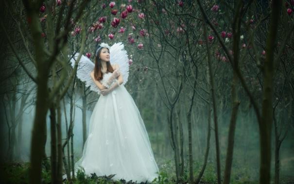 Фото обои сад, девушка, ангел