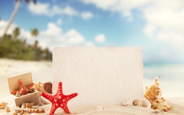 Фото обои песок, море, пляж, лето, солнце, отдых, ракушки