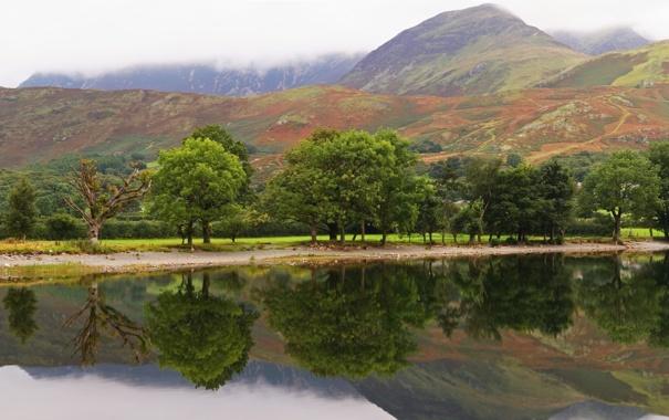 Фото обои деревья, горы, озеро, гладь, отражение