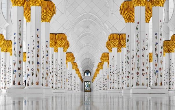 Фото обои белый, украшения, растения, архитектура, лоза, зала