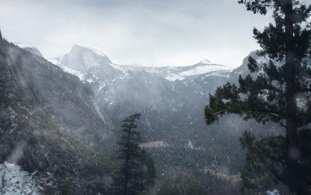 Фото обои лес, снег, горы, Winter