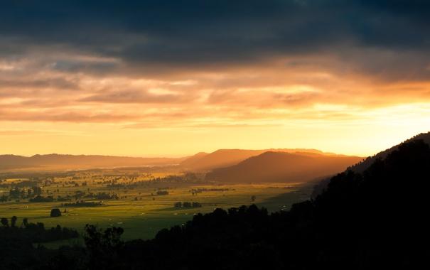 Фото обои зелень, небо, трава, солнце, облака, свет, деревья