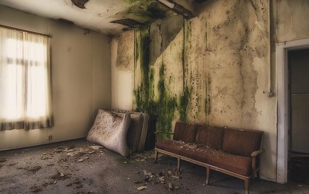 Фото обои комната, диван, окно