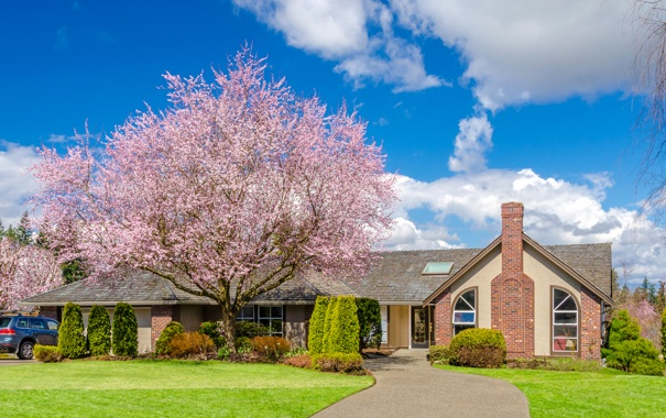 Фото обои зелень, небо, трава, облака, дизайн, дом, дерево