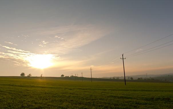 Фото обои пейзажи, поле, трава, фото
