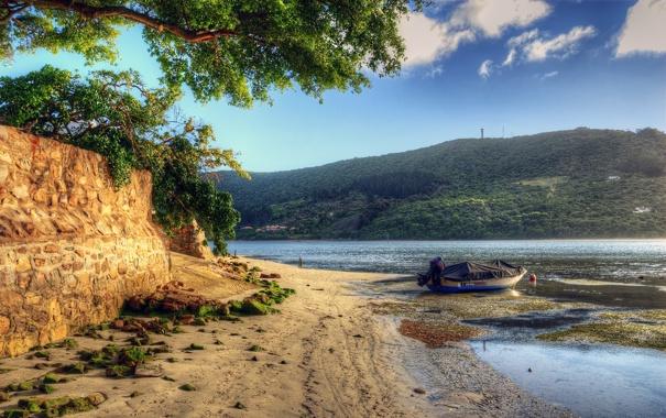 Фото обои пейзаж, река, вода, песок, берег, деревья, природа