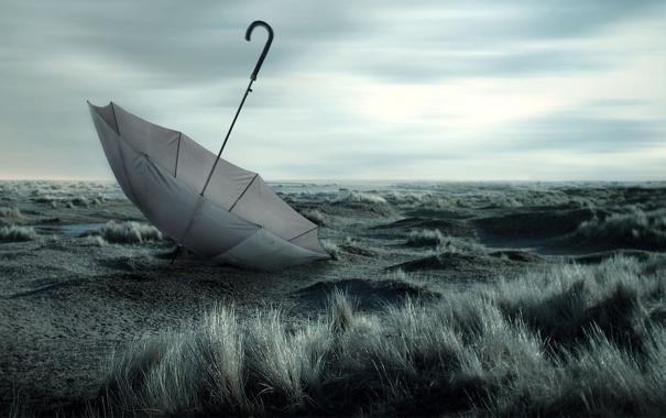 Фото обои трава, земля, зонт