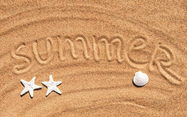 Фото обои песок, море, лето, ракушки