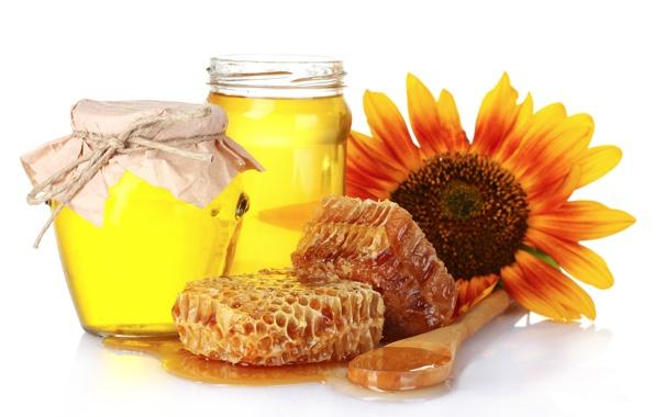 Фото обои цветок, соты, баночки, мёд