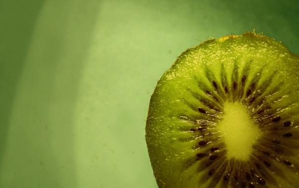 Фото обои макро, еда, киви, фрукт, зеленый фон, macro, kiwi