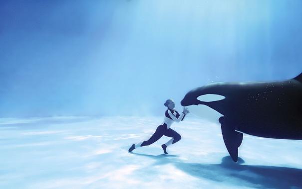 Фото обои пузырьки, дно, под водой, косатка, дрессировщик