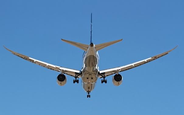Фото обои авиация, самолёт, ANA 787