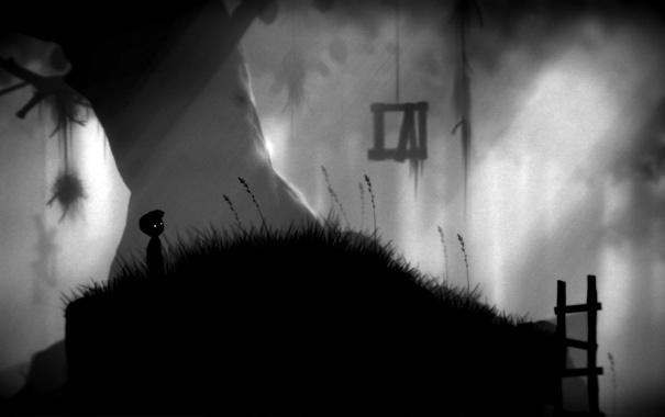 Фото обои трава, лесенка, мальчик, limbo