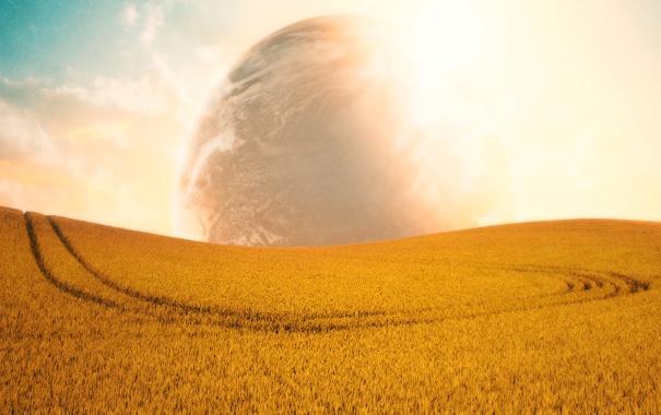Фото обои поле, небо, солнце, облака, свет, пейзаж, природа