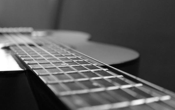 Фото обои макро, гитара, черно-белое, шестиструнная