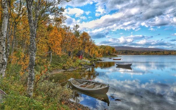 Фото обои осень, деревья, река, лодка, домик