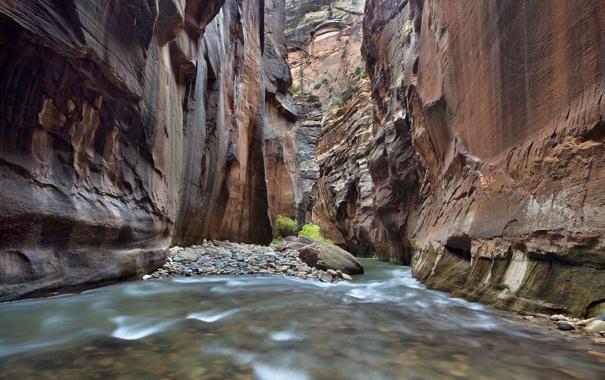 Фото обои река, ручей, камни, скалы, каньон, Zion National Park, сша