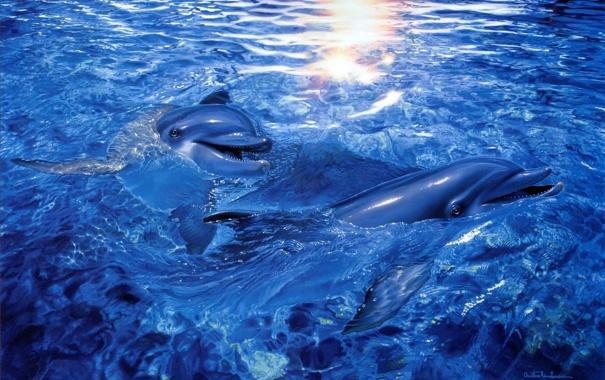 Фото обои море, вода, арт, дельфины, Christian Riese Lassen