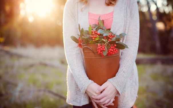 Фото обои девушка, ягоды, красные
