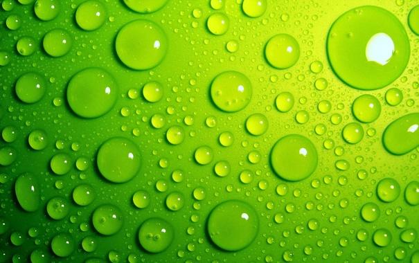 Фото обои вода, капли, фон, зелёные