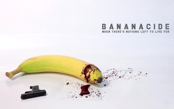 Фото обои пистолет, оружие, кровь, банан, суицид