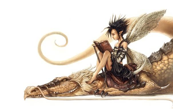 Фото обои дракон, эльф, фея, арт, белый фон, книга, уши