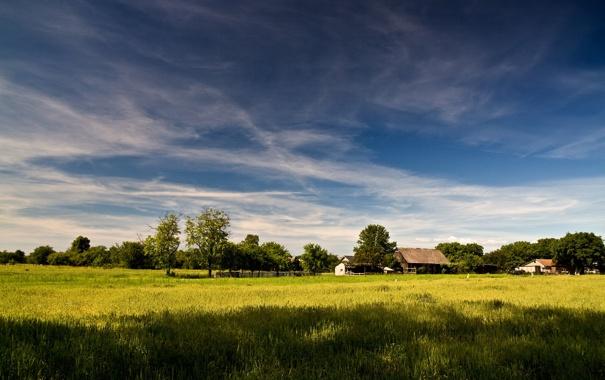 Фото обои трава, природа, фото, обои, пейзажи, дома