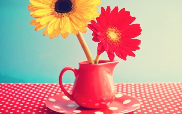 Фото обои цветы, стол, кружка, герберы, vintage, винтаж, flowers