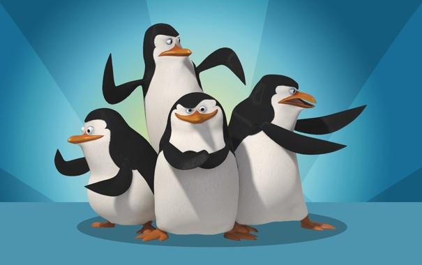 Фото обои Madagascar, четыре, penguins, The Penguins madagascar