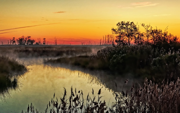 Фото обои пейзаж, природа, туман, река, утро