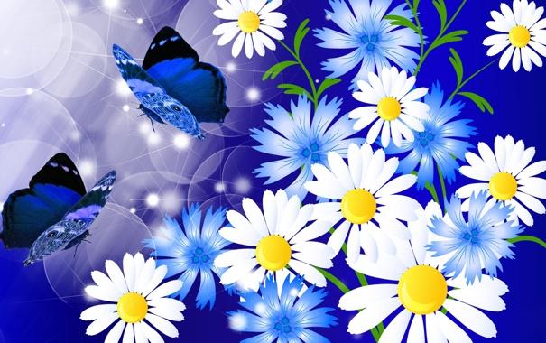 Макро фото бабочки