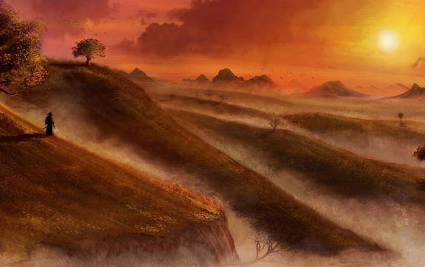 Фото обои небо, деревья, полет, пейзаж, закат, птицы, природа
