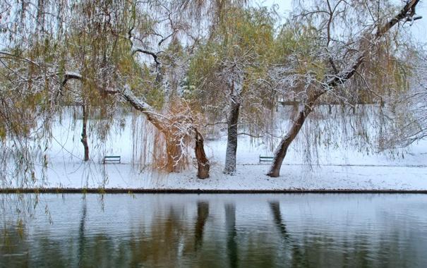 Фото обои зима, осень, листья, снег, пруд, парк, два сезона