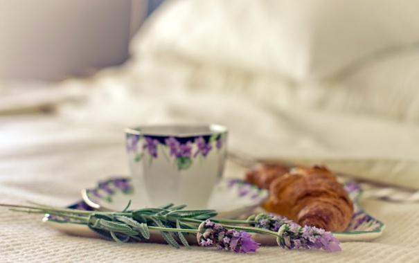 Фото обои макро, цветы, чашка